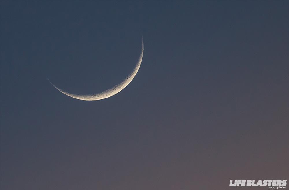 bohan moon